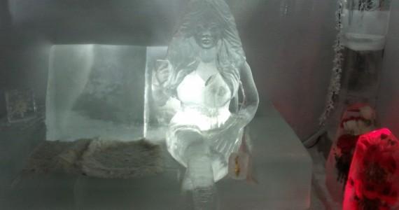 Постоянная посетительница ледяного бара. Рядом с ней есть теплое местечко.